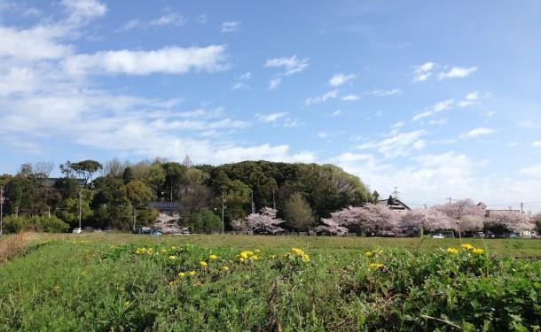 この写真は翌日の晴天時に撮影しました。写真中央のこんもりした古墳の森に白山宮が鎮座されています