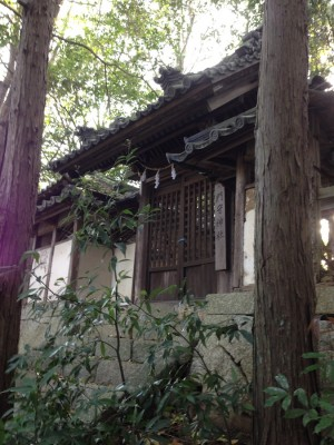 20150418yahashira08b