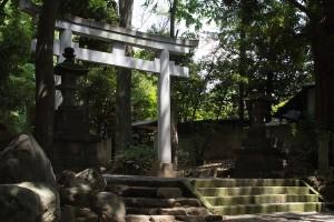 yoyogi02a